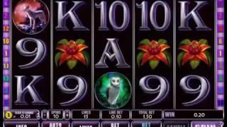видео Играть без смс и регистрации в азартный слот A Night Out (Ночная Вечеринка)