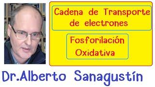 Cadena Transporte Electrones y Fosforilacion Oxidativa| Respiración celular (4)