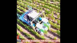 Vaucluse : ces deux chercheurs inventent une technologie qui va changer l'agriculture de demain