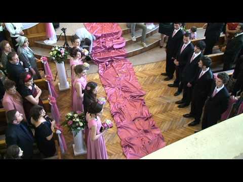 Nunta BENI&CRISTINA - Intrarea mirilor - Andrei CANDRIANU - Lusu AGHENITEI si ....