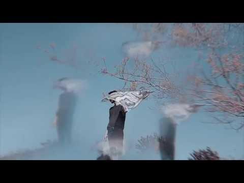 Raoul Vignal - Hazy Days [OFFICIAL VIDEO]