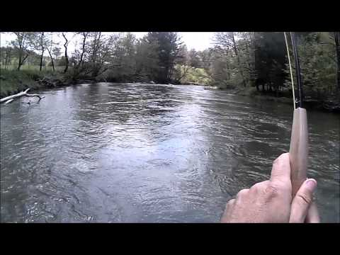 Fly Fishing Pine Creek Titusville May 2014
