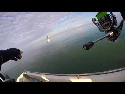 Fishing On The Black Sea Vadu