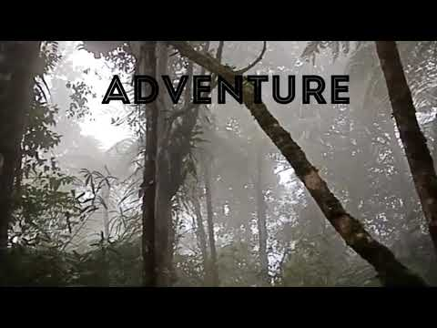 Birding Adventure (Genesis)