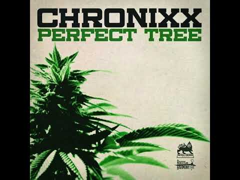 Download Chronixx - Perfect Tree 432hz