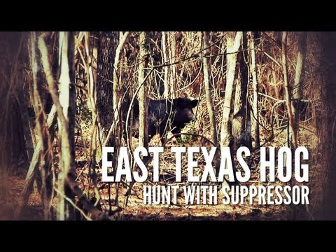 East Texas Hog Hunt | Suppressed Rifle