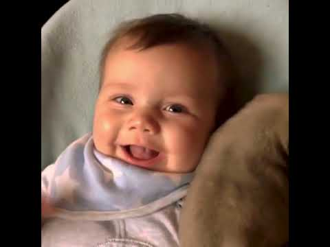 Laughing Babies Playing With Dog And Cats    Funny Baby And Dog Compilations