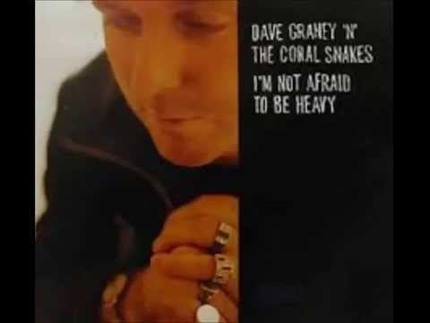 Dave Graney 'n' the Coral Snakes - I'm Not Afraid To Be Heavy