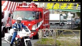 緊急走行で逆走!!  東京消防庁レスキュー車、交機白バイとともに現場急行 Tokyo F.D Rescue Team rescues an emergency