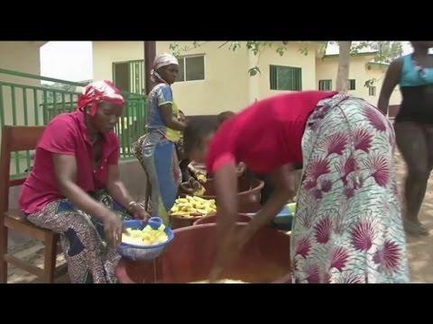 Guinée, Promotion de la transformation locale des fruits