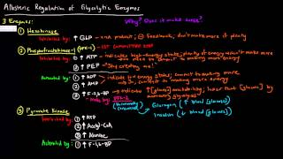 Glycolysis (Part 3 of 3) - Allosteric Regulation