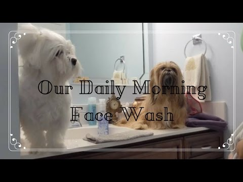 Our Daily Morning Face Wash
