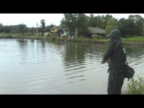 test เหยื่อ ECO LURE by ชมรมตกปลาบ้านแกลง