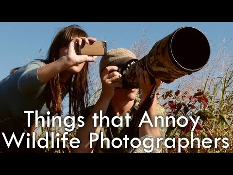 Stuff that Annoys Wildlife Photographers