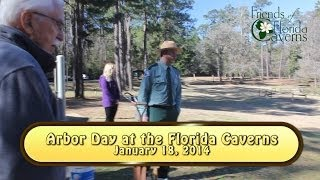 Arbor Day 2014 At The Florida Caverns, Marianna, Fl