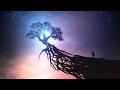 Kári Sigurðsson - Pearl [epic Music - Beautiful Inspirational Orchestral] video