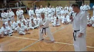 XX Seminarium Karate Shotokan we Wrocławiu 25-26.03.2011 r. - kata Bassai-dai z Kennethem Funakoshi