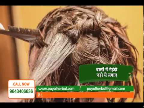 How to use Payal