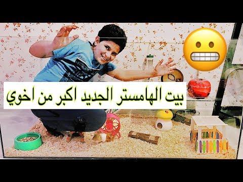 سويت بيت عملاق لهامستراتي ال 11 😱 شوفوا ردة فعلهم 😍😂   New Hamster House / Mohamed Vlog