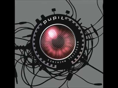 Pupil - False Alarm