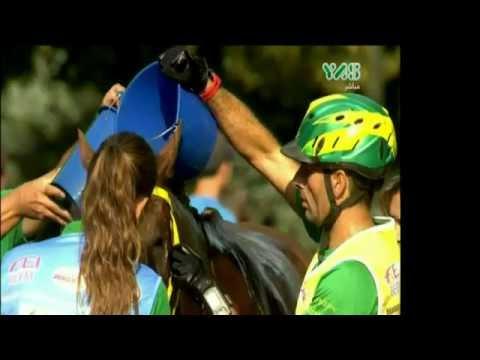Belgium - FEI Brussels Endurance Masters - 18 August 2016