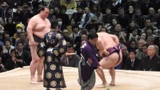 大相撲三月場所四日目、稀勢の里vs蒼国来を現地で撮影しました。(2016....