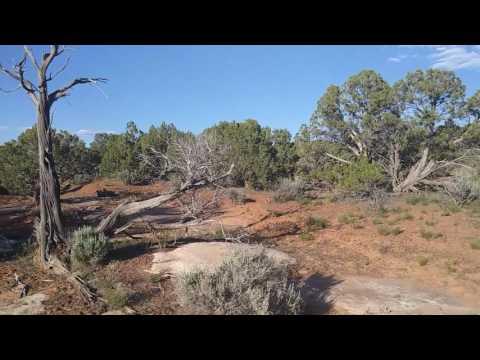 Canyons of the Ancients BLM Utah