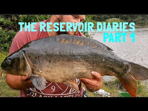 🔴 CARP FISHING: THE RESERVOIR DIARIES PART 1