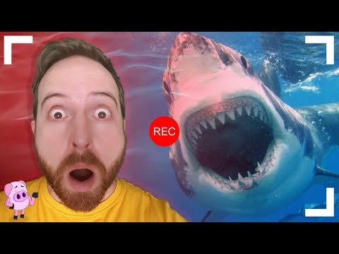 8 Terrifying Moments Caught on GoPro You Have to See