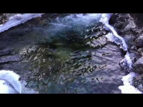 MOUNT SHASTA: Meditation at Stewart Mineral Springs... the Healing Waters