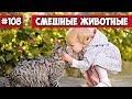 Смешные животные - животные и дети | Bazuzu Video ТОП подборка 108, январь 2018
