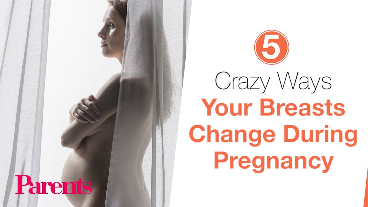 pregnancy changes No breast during
