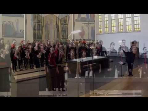 Schweizer Jugendchor - Choeur Suisse des Jeunes -Jubiläumstournee 2014