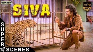 Siva | சிவா (1989) Super Scenes - Rajinikanth | Raghuvaran | Ilaiyaraaja | Janagaraj | Bayshore