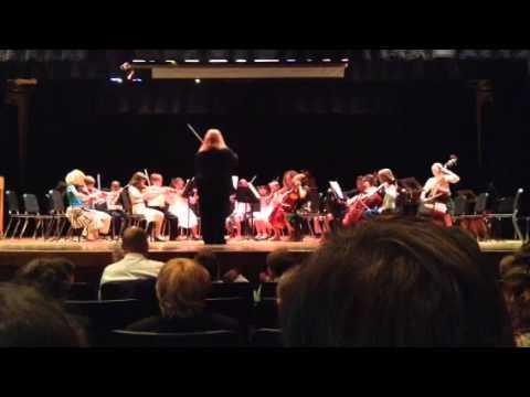 Charlottesville Waldorf School Music Night