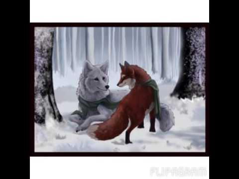 anime wolf love tribute - YouTube  Two Wolves In Love Anime