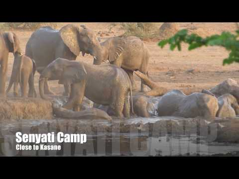 Botswana Self Drive Road Trip October 2016