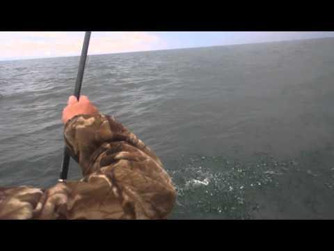бесплатная рыбалка в маяках