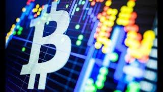 Bitcoin Falls Below 8000, Lightning Network Smart Contracts And Security Token Exchange