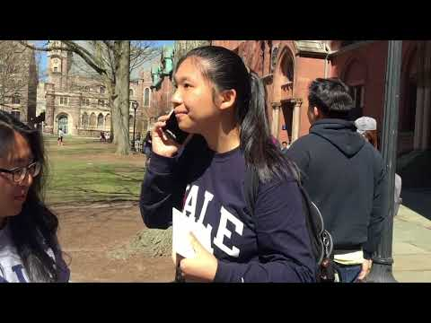 Visiting Yale During Bulldog Days! Day 1