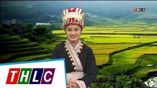 Thời sự tiếng Dao (phát sóng từ 20/4/2017) | THLC