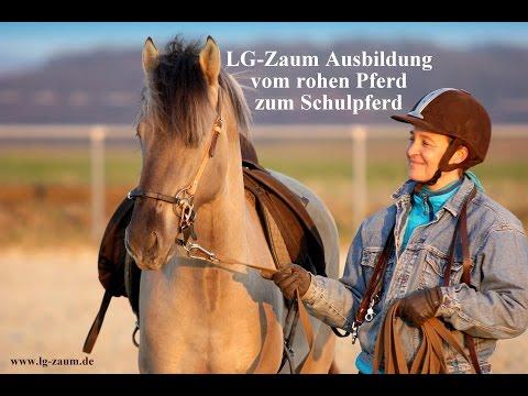 LG-Zaum Ausbildung vom rohen Pferd zum Schulpferd (in 11 Minuten)