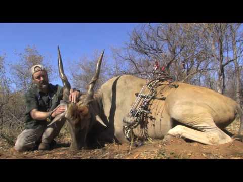 2016 thwane safaris africa hunting promo