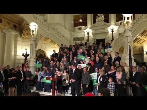 Champion swimmer with Down syndrome speaks in support of Pa. abortion restriction