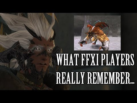 What Final Fantasy XI Players Really Remember...