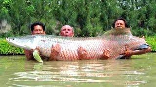7 ШОКИРУЮЩИХ моментов на рыбалке, снятых на камеру
