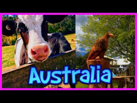 Desde una Area Rural (COUNTRY TOWN) en AUSTRALIA? VLOG | Mi Vida en Australia