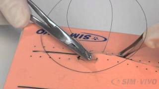 SIM SUTURE - 5. Running Simple Sutures