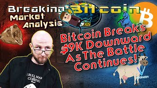 Bitcoin Plunges Below $9K - Trading Update!  VeChain Delivers the Beef - Europe's New Bitcoin Plan!