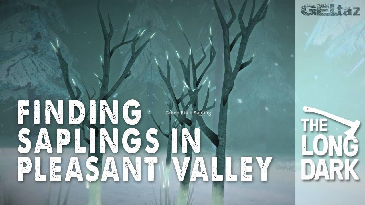 Worksheet. The long Dark Help finding Saplings in Pleasant Valley  YouTube